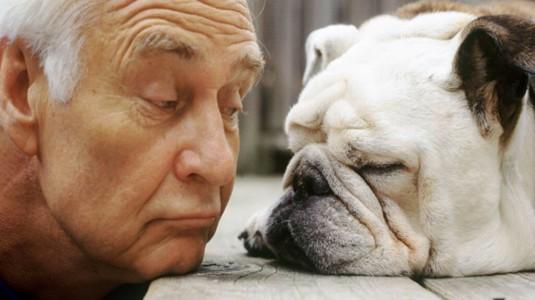 Risultati immagini per cane che tu baciano