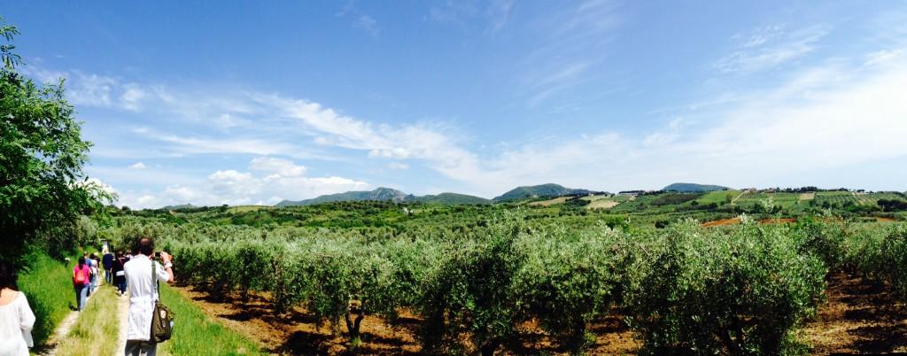 Nessun Dorme - Panorama di San Vincenzo
